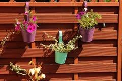Las flores coloridas en potes colgaron en una cerca de madera Imagenes de archivo