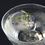 Las flores congeladas en un florero de vidrio con agua caen en un fondo negro Fotos de archivo