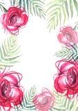 Las flores de la acuarela subieron rosa, helecho de la hoja Cartel floral stock de ilustración