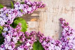 Las flores de la lila en viejo fondo de madera Fotos de archivo