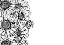 Las flores de la margarita dan la tarjeta exhausta ilustración del vector