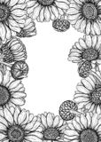 Las flores de la margarita diseñan el sistema de elementos libre illustration