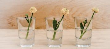 Las flores de la primavera en vidrios en un fondo de madera de la tabla con la bandera añaden Estilo de la vendimia tono de image imágenes de archivo libres de regalías
