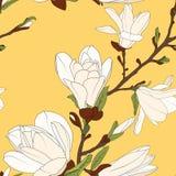 Las flores de la rama de árbol de la magnolia florecen los brotes del flor Estampado de flores botánico inconsútil Fondo amarillo ilustración del vector