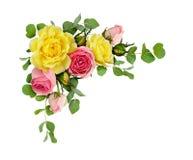 Las flores de la rosa del rosa y del amarillo con el eucalipto se van imagen de archivo