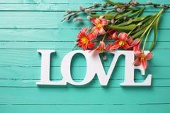 Las flores de los tulipanes de la primavera fresca, las ramas del sauce y la palabra rojas aman Imagen de archivo libre de regalías