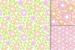 Las flores de Rose con verde salen del sistema inconsútil del fondo del modelo Imagenes de archivo