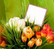 Las flores del resorte con la bandera agregan Foto de archivo