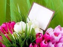 Las flores del resorte con la bandera agregan Imagenes de archivo