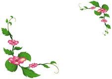 Las flores del rosa con verde salen del fondo Fotos de archivo libres de regalías