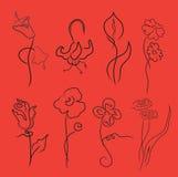 Las flores diseñan el conjunto ilustración del vector