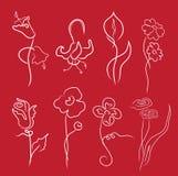 Las flores diseñan el conjunto Fotografía de archivo libre de regalías