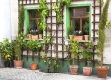 Las flores en potes de la terracota - cultive un huerto antes de una casa Imagen de archivo libre de regalías