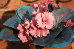 Las flores falsas hacen un hogar Imagen de archivo libre de regalías