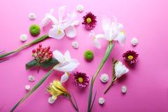 Las flores hermosas dispersaron en el fondo rosado, visión de arriba Imagen de archivo