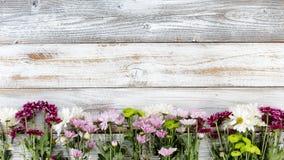 Las flores mezcladas que formaban la frontera inferior en blanco resistieron a BO de madera Imágenes de archivo libres de regalías