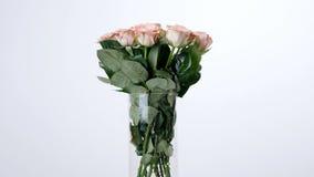 Las flores, ramo, rotación en el fondo blanco, composición floral consisten en capuchino de las rosas Belleza divina almacen de video