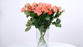 Las flores, ramo, rotación en el fondo blanco, composición floral consisten en el eucalipto, cineraria, tolerancia poner crema de metrajes