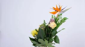 Las flores, ramo, rotación en el fondo blanco, composición floral consisten en el Strelitzia, Rose de la avalancha, solidago almacen de metraje de vídeo