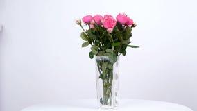 Las flores, ramo, rotación en el fondo blanco, composición floral consisten en las rosas rosadas pión-formadas metrajes