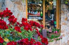 Las flores rojas del geranio se cierran para arriba con la pared de piedra y la ventana en foto de archivo