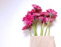 Las flores rojas del gerbera están en el bolso, en el fondo blanco El concepto de verano, primavera, día de fiesta el 8 de marzo, Imagen de archivo libre de regalías