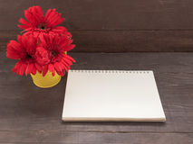 Las flores rojas del gerbera están en la maceta, en el backgrou de madera Imagenes de archivo