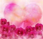 Las flores rosadas de las rosas y el corazón rosado grande con el bokeh y la lente señalan por medio de luces Imagenes de archivo