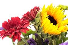 Las flores se mezclaron Fotos de archivo libres de regalías