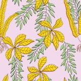 Las flores tropicales, selva se van, flor de la ave del paraíso libre illustration