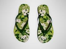 Las flores verdes varan los deslizadores para la opinión superior 3d de la muchacha para rendir en fondo gris con la sombra imagen de archivo libre de regalías