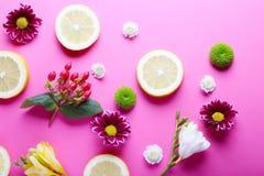 Las flores y las rebanadas hermosas del limón dispersaron en fondo rosado, Foto de archivo libre de regalías