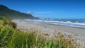 Las formaciones de roca y el paisaje escénico en Motukiekie varan en Nueva Zelanda Imágenes de archivo libres de regalías