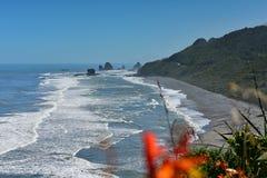 Las formaciones de roca y el paisaje escénico en Motukiekie varan en Nueva Zelanda Fotografía de archivo