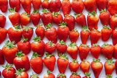 Las fresas frescas en un fondo texturizado blanco se alinearon, repitiendo, y haciendo un modelo imagen de archivo libre de regalías