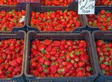 Las fresas rojas frescas en cestas alistan en venta en el mercado, fondo de las fresas recién cosechadas, foco seleccionado fotografía de archivo