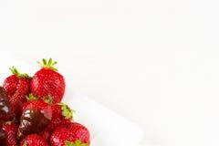 Las fresas sumergieron en chocolate delicioso en el plato blanco aislado en el fondo blanco Ciérrese encima de la visión Foto de archivo libre de regalías