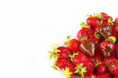 Las fresas sumergieron en chocolate delicioso en el plato blanco aislado en el fondo blanco Ciérrese encima de la visión Imágenes de archivo libres de regalías