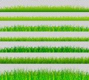 Las fronteras de la hierba verde fijaron en vector transparente del fondo Imagen de archivo