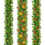 Las fronteras inconsútiles de la Navidad de la acuarela del abeto ramifican, los conos, baya roja Fotografía de archivo