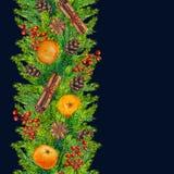 Las fronteras inconsútiles de la Navidad del abeto ramifican, los conos, bayas rojas, canela Fotos de archivo libres de regalías