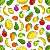 Las frutas bosquejaron iconos en modelo inconsútil de la fruta Fotos de archivo libres de regalías
