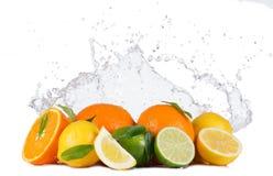Las frutas cítricas con agua salpican en blanco Fotografía de archivo