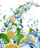 Las frutas cítricas frescas en agua salpican con los cubos de hielo Imágenes de archivo libres de regalías