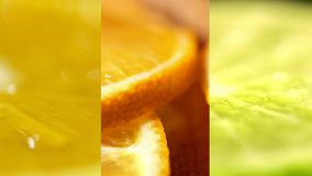 Las frutas cítricas se cierran para arriba Cal amarillo-naranja y verde jugosa hermosa Varios marcos en un vídeo Collage de los a almacen de metraje de vídeo