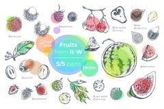 Las frutas dan el sistema exhausto de los iconos Alimento biológico fresco stock de ilustración