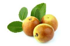 Las frutas de la azufaifa con las hojas se cierran para arriba Fotografía de archivo