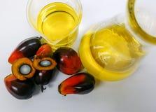 Las frutas de la palma y el aceite de palma, una fruta se corta para mostrar su corazón Imagen de archivo