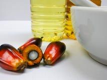 Las frutas de la palma y el aceite de palma, una fruta se corta para mostrar su corazón Fotos de archivo libres de regalías