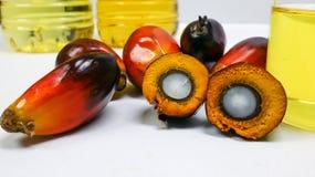 Las frutas de la palma y el aceite de palma, una fruta se corta para mostrar su corazón Fotografía de archivo